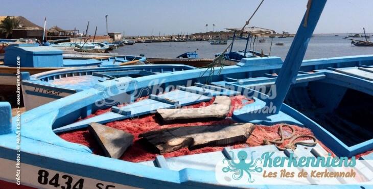 Felouque (Flouka) El Attaya (Kerkennah)