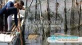 Hommage aux pêcheurs, cueilleurs de saveurs îles de Kerkennah