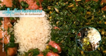 Ajouter Huile d'olive et riz couscous aux calmars farcis (Kosksi bel mattik mehchi)