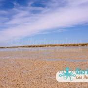 La plage de l'îlot de Grimdi – Archipel de Kerkennah