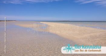 îlot de Grimdi Tunisie Archipel de Kerkennah photo 19