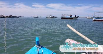 îlot de Grimdi Tunisie Archipel de Kerkennah photo 20