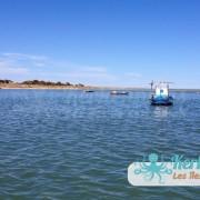 Un dernier regard sur l'îlot de Grimdi – Archipel de Kerkennah