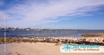 îlot de Grimdi Tunisie Archipel de Kerkennah photo 3
