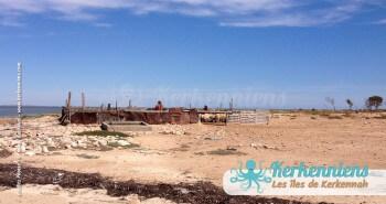 îlot de Grimdi Tunisie Archipel de Kerkennah photo 4