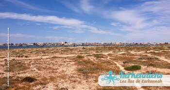 îlot de Grimdi Tunisie Archipel de Kerkennah photo 6