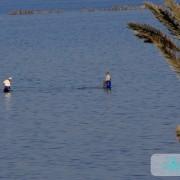 Kerkenniens pêche à pied