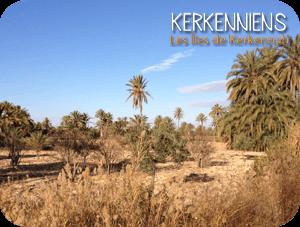 Kerkennah, havre de mon enfance - Kerkena Kerkenniens