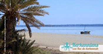 Kerkennah ou la marée en Méditerranée Tunisie