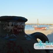 Kerkennah San'Art Photographie (Sanna Fehri) Photographe Amateur