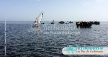 Koffa (le couffin) à Ouled Yaneg Kerkennah (Tunisie) Kerkennah photo 1