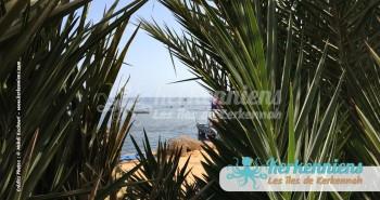 Koffa (le couffin) à Ouled Yaneg Kerkennah (Tunisie) Kerkennah photo 12