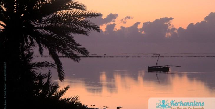 Lever de soleil et palmiers