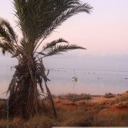 Kerkennah: lever de soleil