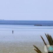 Marée basse à Ouled Kacem