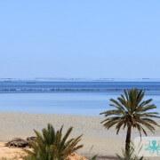 Paysage de marée Kerkennienne