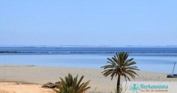 Phénomène en Méditerranée de la marée de l'Archipel de Kerkennah (Tunisie)