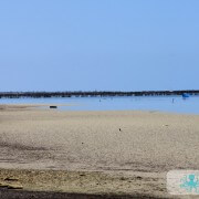 Marée basse à Kerkennah