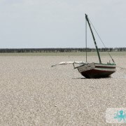 Marée basse à Kerhennah