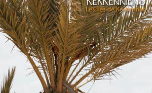 L'ouverture de Kerkenniens.com