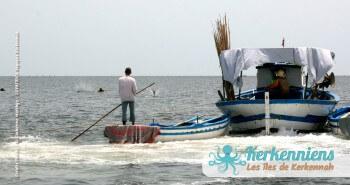 Pêche à la Sautade Damassa pêche au mulet à Kerkennah image 12