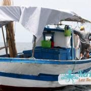 L'embarcations de la pêche la pêche à la Sautade (Damassa) les mulets