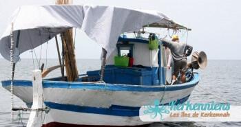 Pêche à la Sautade Damassa pêche au mulet à Kerkennah image 2