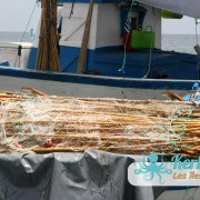 Le filet avec les flotteurs et les roseaux pour la pêche la pêche à la Sautade (Damassa)