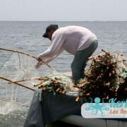 Le filet et le pêcheur préparation…