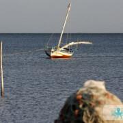 Pêche au filet Kerkennah