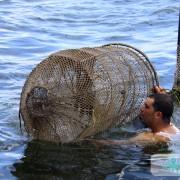 Photo Pêcheries traditionnelle