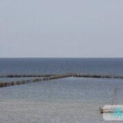 Pêche fixe Chrafi – Kerkennah