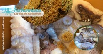 Poulpe karnit coriandre moulus tebel recette cuisine Kerkenniens
