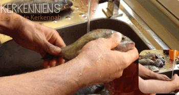 Recette de cuisine: Poisson méchoui (Poisson au barbecue) à la Kerkennienne