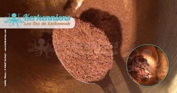 Recette cuisine obtenir poudre de votre condiment ras el hanout made in Kerkenniens