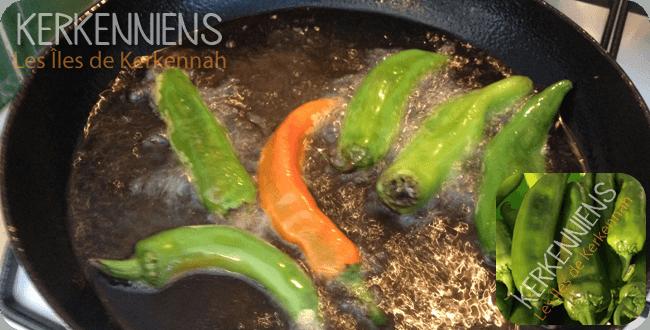 Recette de cuisine: Tastira Tunisienne (entrée chaude ou froide) - Image 1