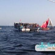 Regroupement des barques Koffa L'expérience de la koffa quand tu n'es pas kerkennien