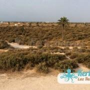 Fort Lahsar îles de Kerkennah Tunisie Borj Lahsar Kerkennah