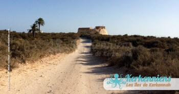 Fort Lahsar îles de Kerkennah Tunisie Borj Lahsar Kerkennah 21