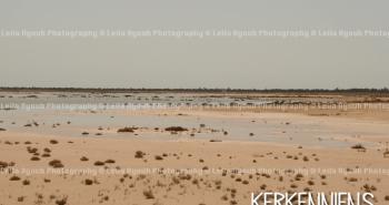 Le ciel, la sebkah, moi et mon écho - Photo de Leila Ayoub Kerkennienne