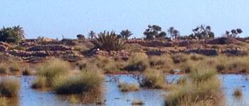 Kerkennah karkna Tunisie Archipel