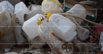 Tunisie: l'Archipel de Kerkennah submergée par les déchets