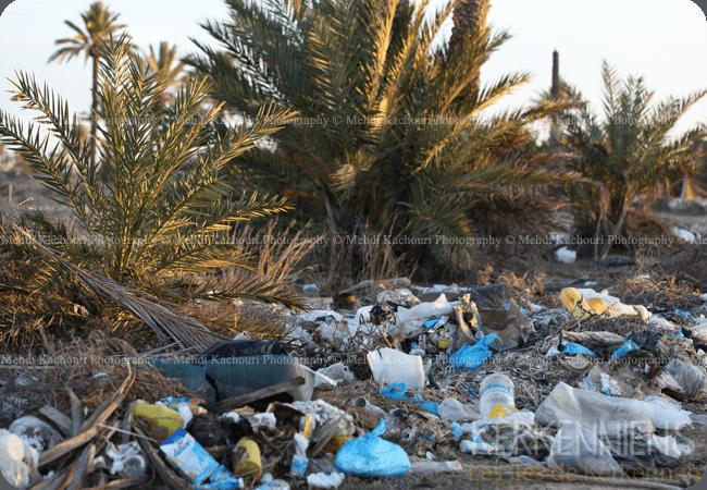 Tunisie: l'Archipel de Kerkennah submergée par les déchets - Kerkenniens - photo 5