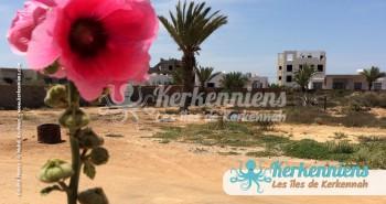 Balade et rando dans un village de Kerkennah, Ouled Yaneg